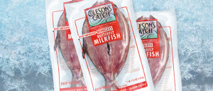 butterfly-milkfish-frost
